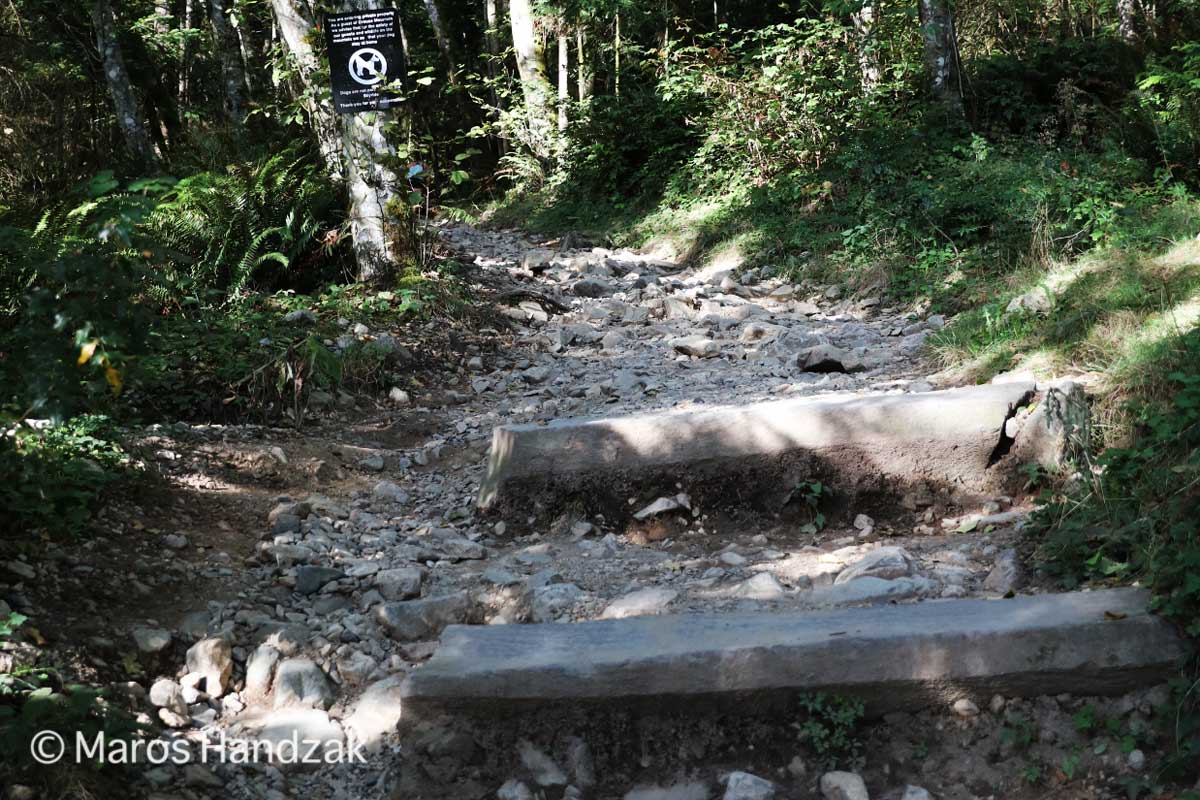 Grouse Mountain - Big Stone Stairs