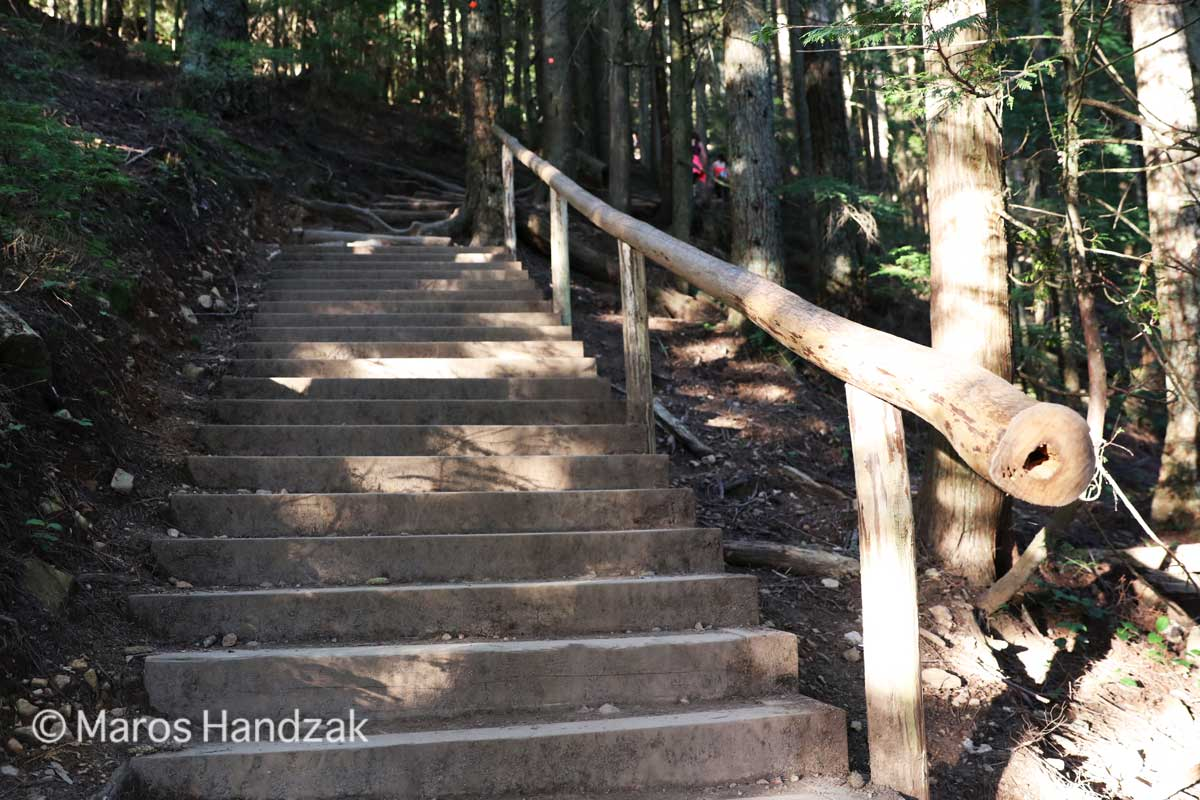 Grouse Mountain - Wooden Stairs
