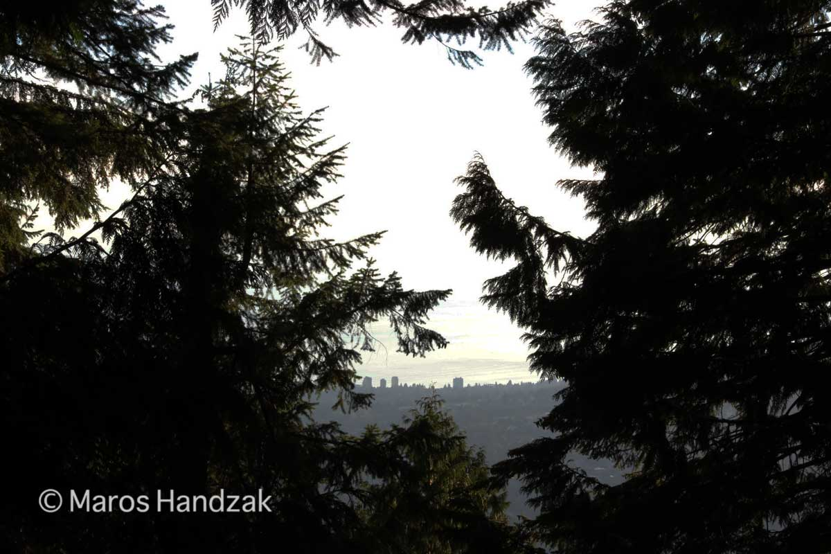 Grouse Mountain Trail - View Of The City