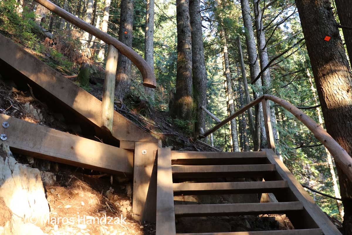 Grouse Mountain - Wooden Stairs 2