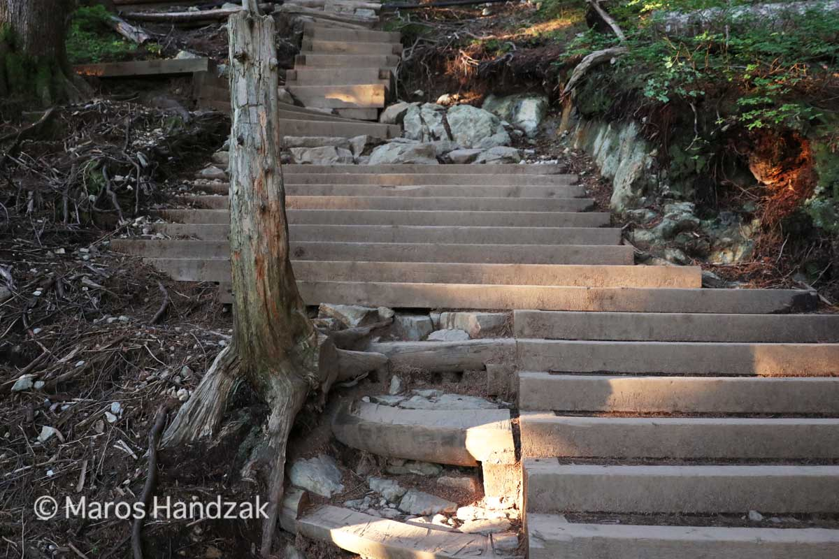 Grouse Mountain Trail - Many Stairs