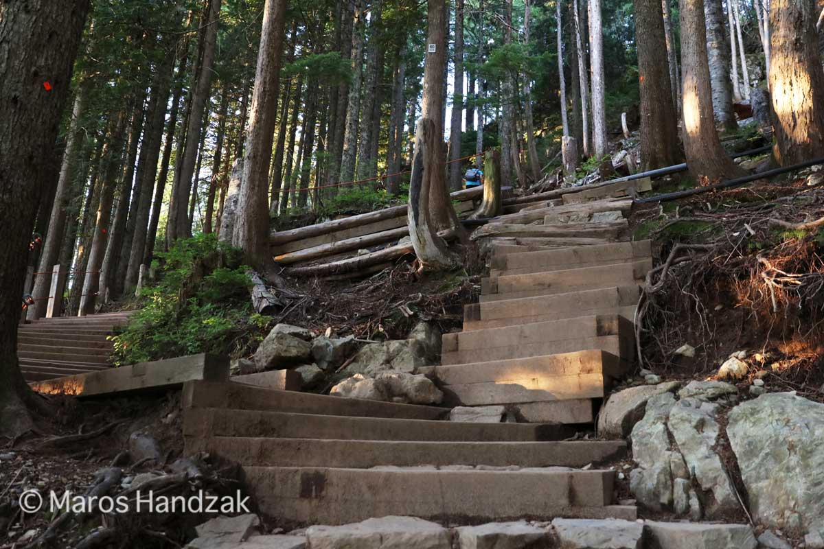 Grouse Moutain Trail - Steep Stairs