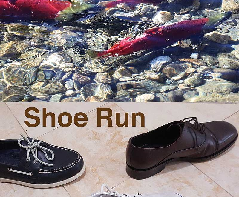 Salmon Run vs. Shoe Run